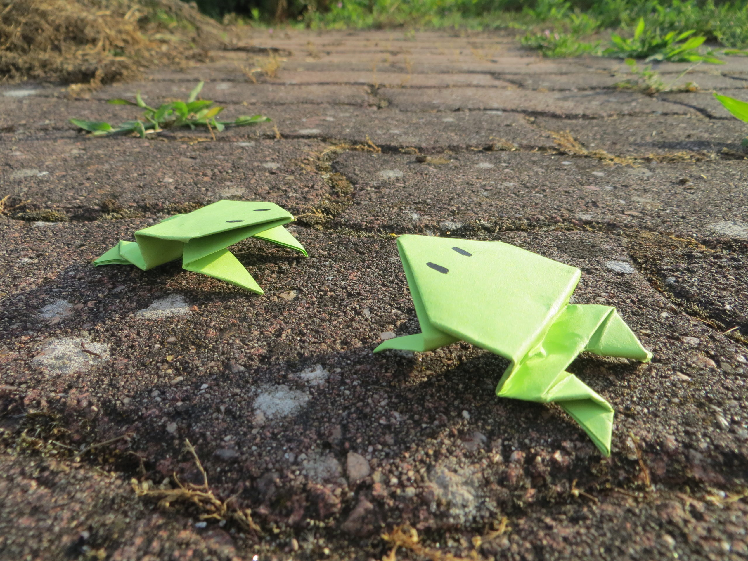 <b>L'atelier de Camille</b></br> Fabrication de grenouilles en papier
